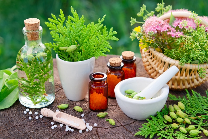 homeopathie plantes soins